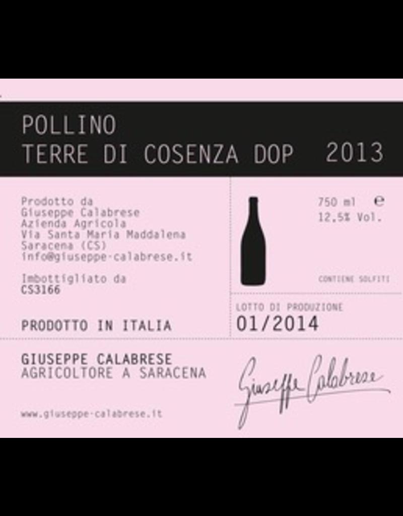 """Italy 2015 Giuseppe Calabrese Terre di Cosenza """"Pollino"""" Magliocco Dolce"""