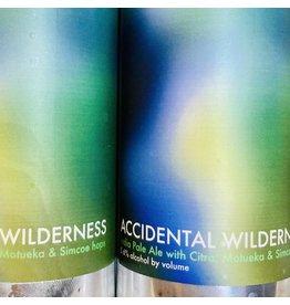 USA Honest Weight Accidental Wilderness IPA 4pk