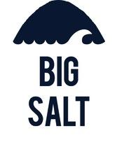 2016 Ovum Big Salt