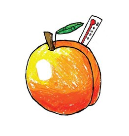 Brewski 'Aprikofsfeber' NE IPA w/ Apricots 16oz (Can)