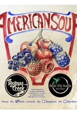 Birds Fly South Ale Project x Thomas Creek 'American Sour: Black Currants' Ale 750ml
