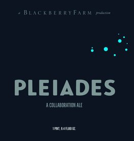 Blackberry Farm Brewery 'Pleiades' Mixed-Culture Collaboration Ale 750ml