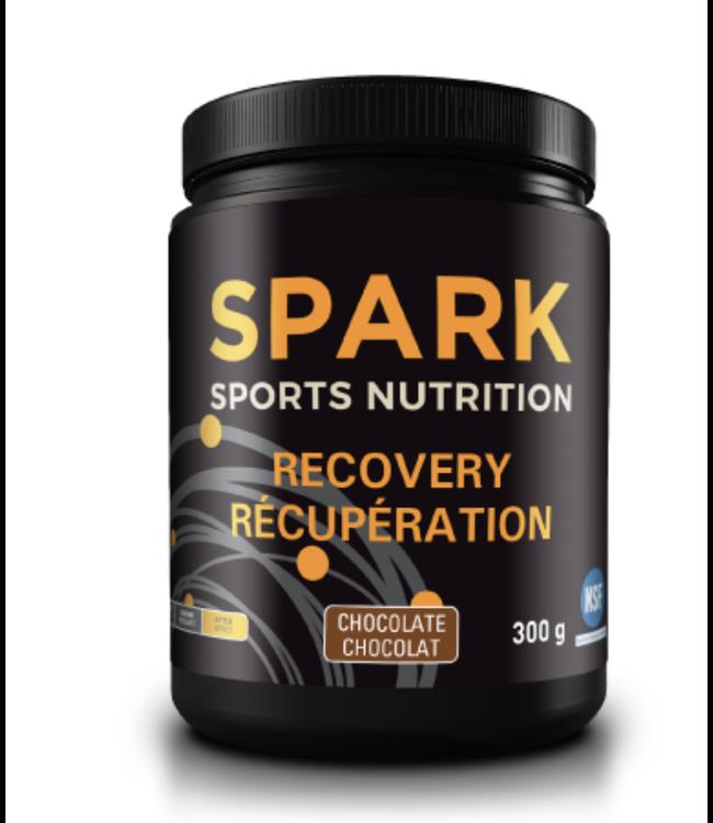 Spark Spark Récupération Chocolat 300G