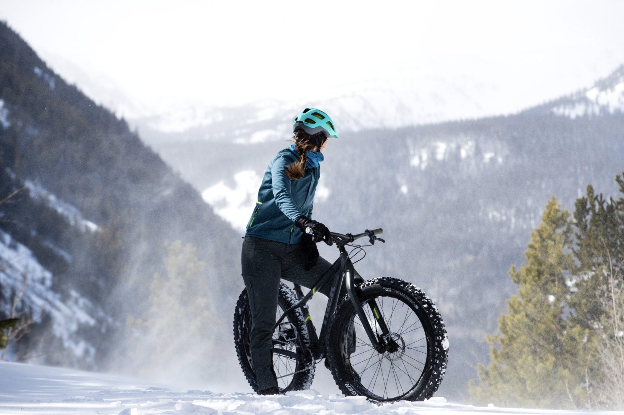 Le vélo Fat Bike