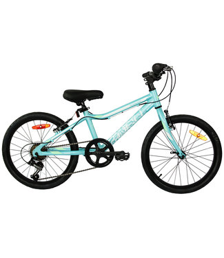 DCO 20 DCO Roader 20'' Turquoise