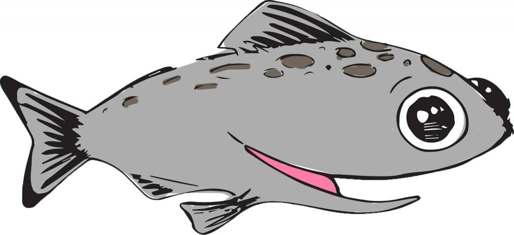 Purée de saumon