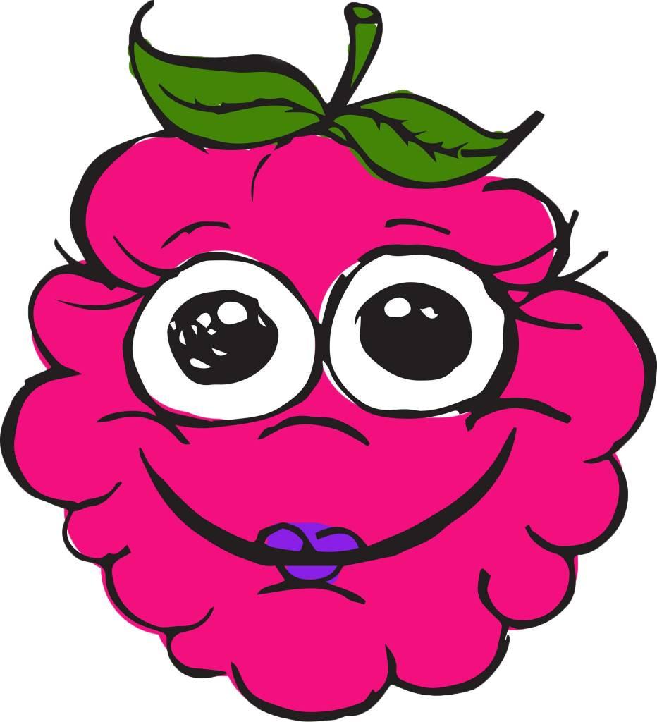 Raspberry & apple puree