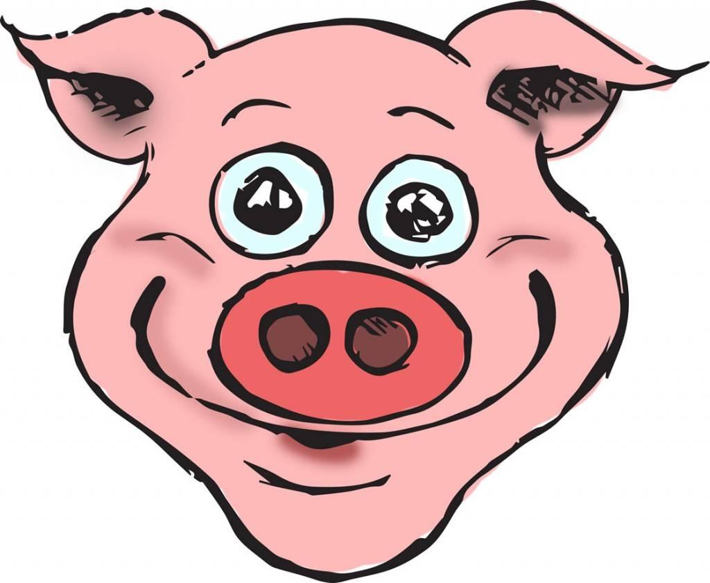 Pork puree
