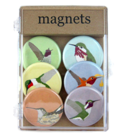 Bird vs Bird Birds - Hummingbirds - Magnet Set