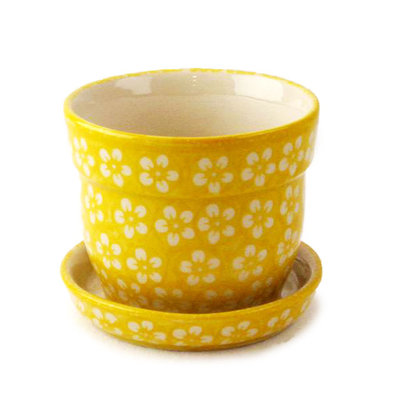 Yellow Blossom Flower Pot w/ Saucer - Sm