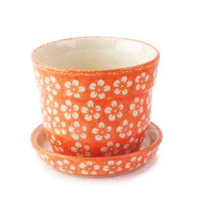 Orange Blossom Flower Pot w/ Saucer - Sm