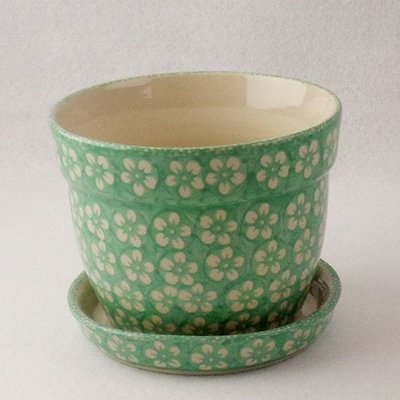 Mint Blossom Flower Pot w/ Saucer - Lrg