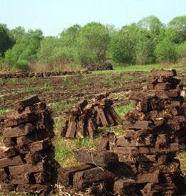 Cappabane Irish Turf Peat