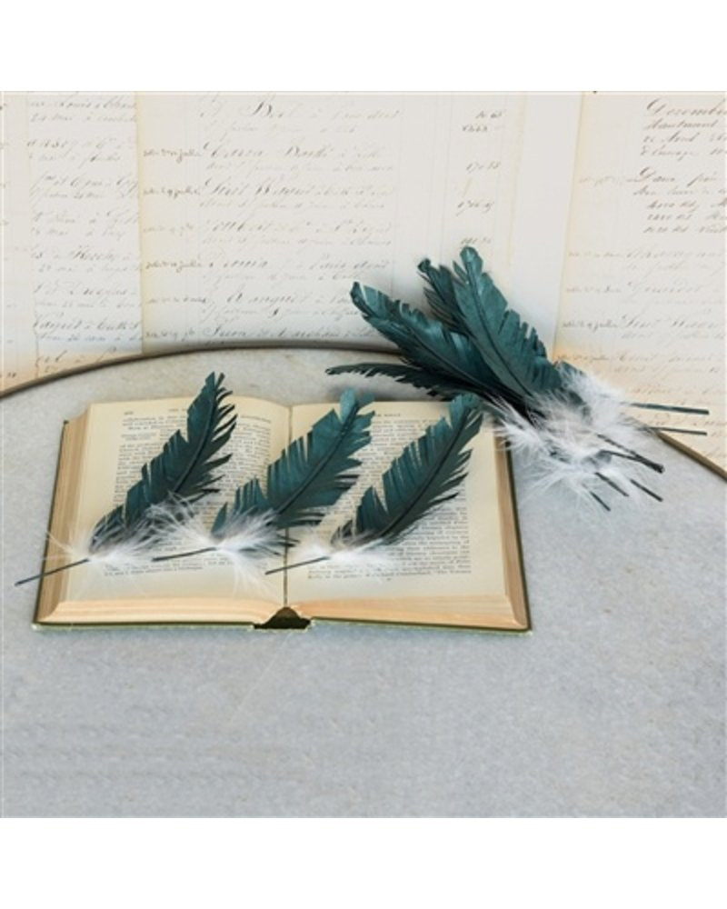 HomArt Paper Feathers in Aqua - Box of 12