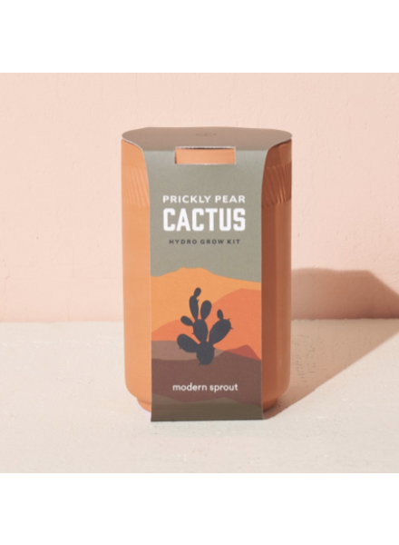 Modern Sprout Terracotta Kit - Cactus