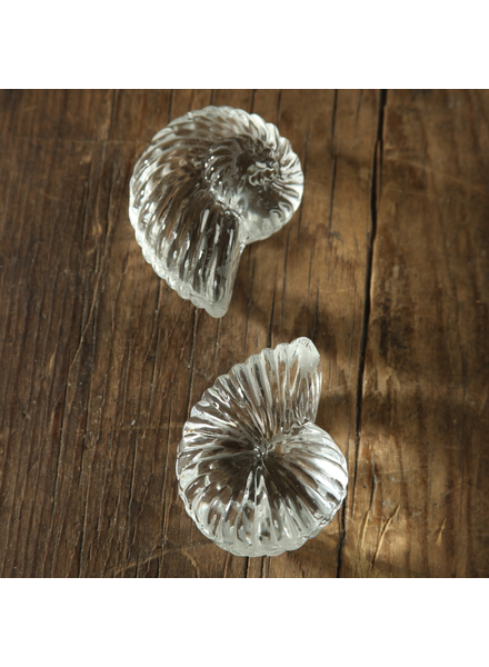 HomArt Glass Nautilus - Set of 4