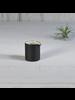 HomArt Black Dominic Pitcher, Ceramic - Set of 2