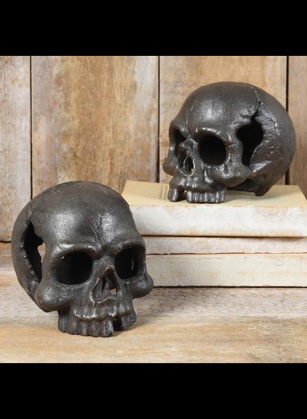 HomArt Skull, No Jaw - Natural