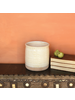 HomArt Cheyenne Cachepot, Ceramic - Lrg - White