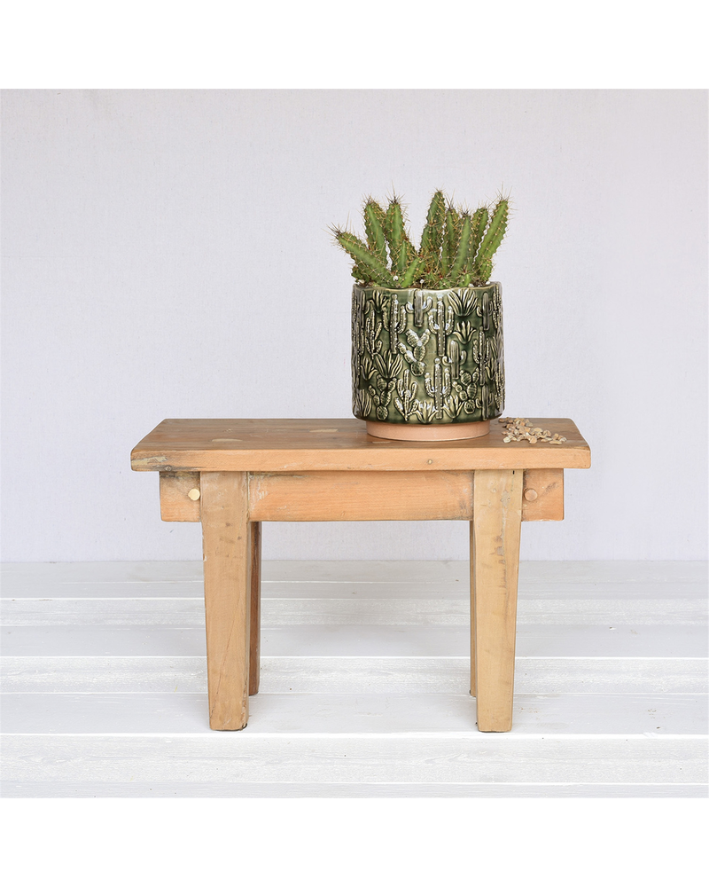 HomArt Cactus Motif Cachepot, Ceramic - Lrg - Green