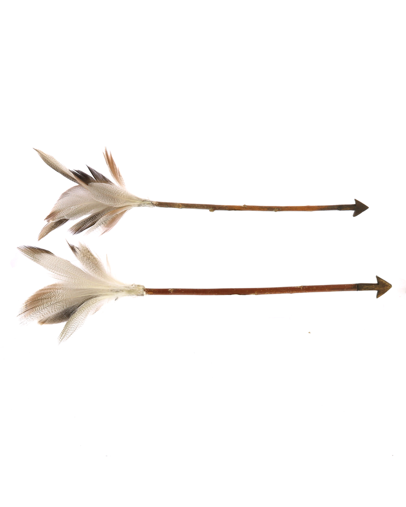 HomArt Arrows, Feather - Box of 6, Assorted