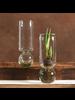 HomArt Recycled Glass Tall Bulb Vase