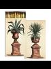HomArt Agave Urns HomArt Matches - Set of 3 Boxes