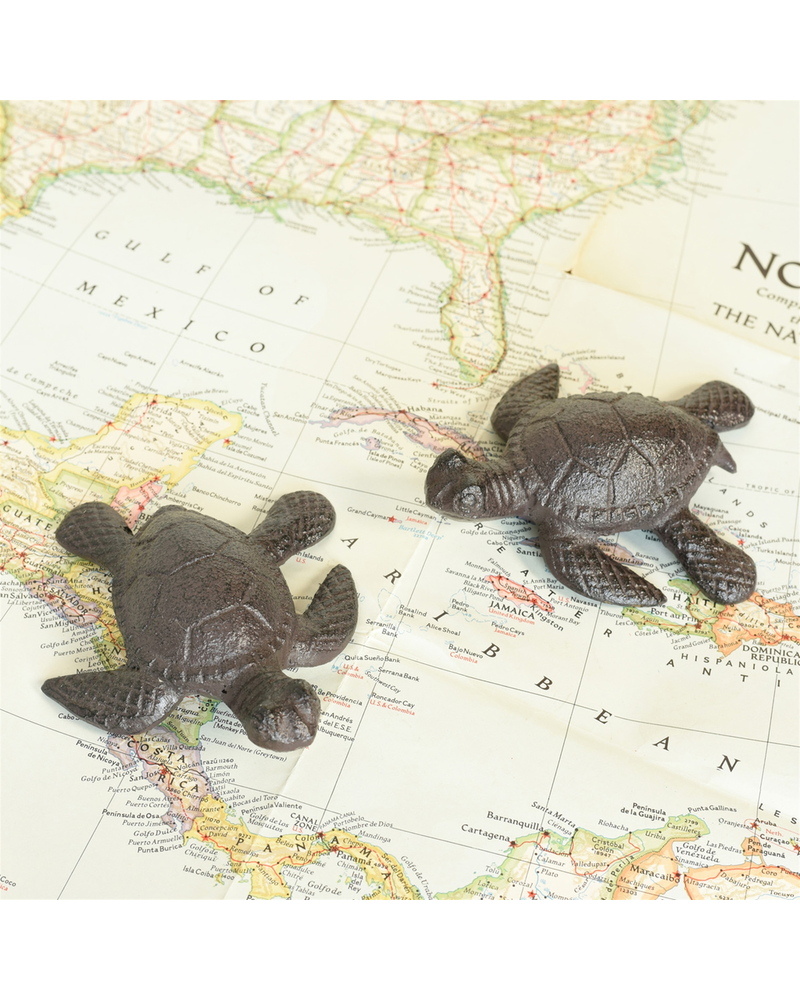HomArt Cast Iron Sea Turtle - Brown - Set of 2