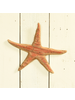 HomArt Kelso Wood Starfish, Distressed Red - Red