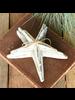 HomArt Kelso Wood Starfish, Set of 3 - White & Teal