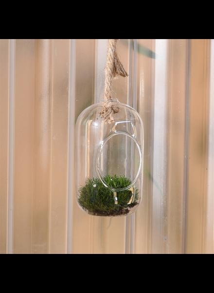 HomArt Sole Hanging Terrarium, Glass - Sm - Set of 2