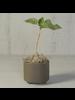HomArt Simon Footed Planter, Ceramic, Grey - Sm - Matte Grey