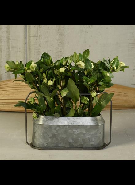 HomArt Napa Vase, Metal & Zinc - Oval, Lrg - Zinc