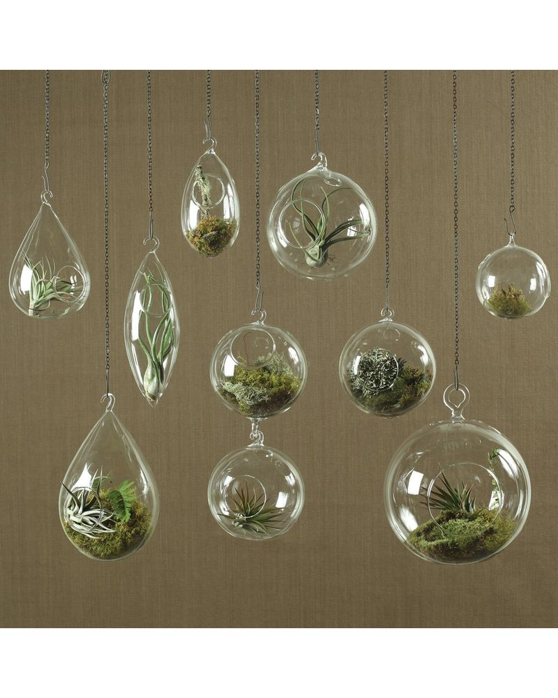 HomArt Hanging Bubble - Sm Clear - Set of 2