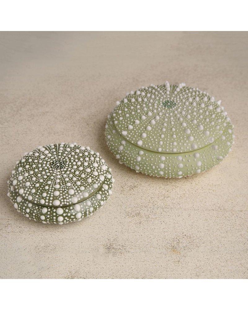 HomArt Green Sea Urchin Round Porcelain Box - Sm