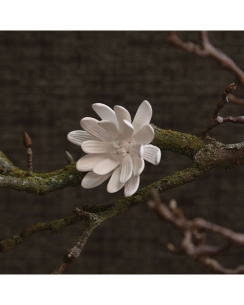 HomArt Bone China Curled Magnolia Flower White