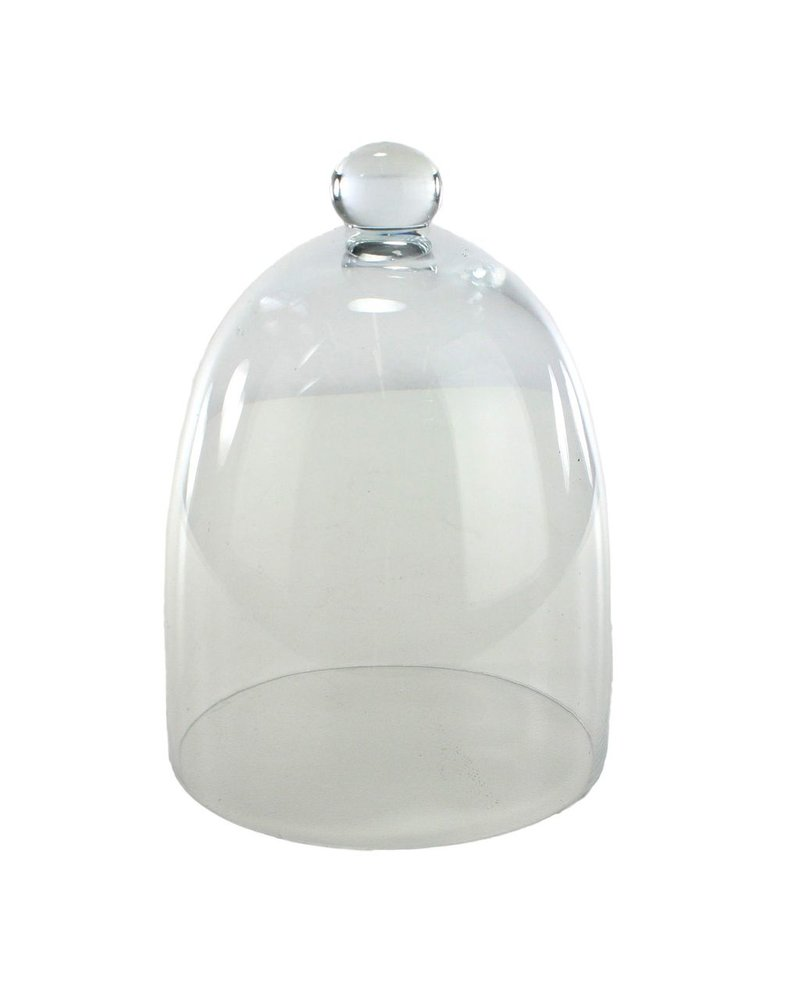 HomArt Glass Dome - Tapered - Lrg Clear