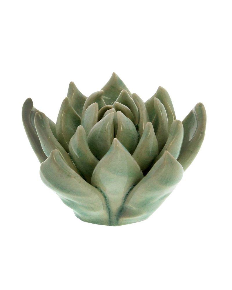 HomArt Small Ceramic Succulent - Set of 2