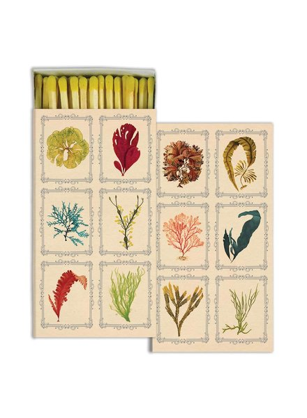 HomArt Kelp - Matches Set of 3 Boxes