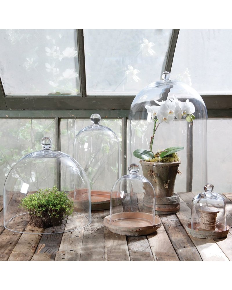 HomArt Glass Dome - Med Clear