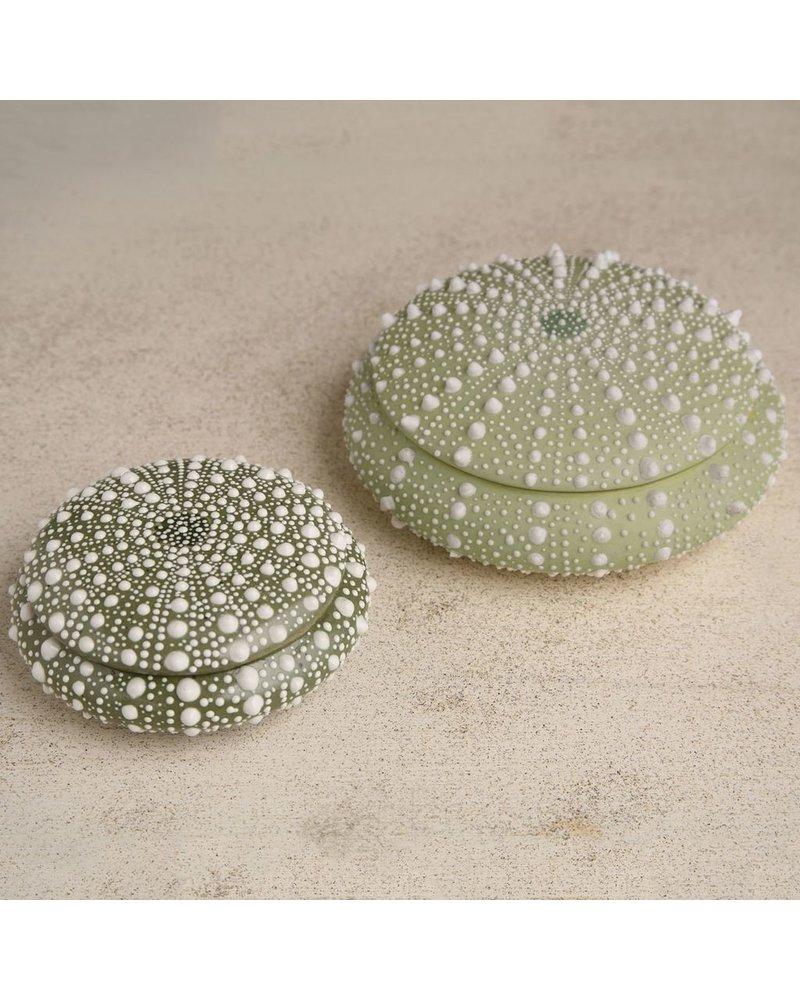 HomArt Green Sea Urchin Round Porcelain Box - Lrg