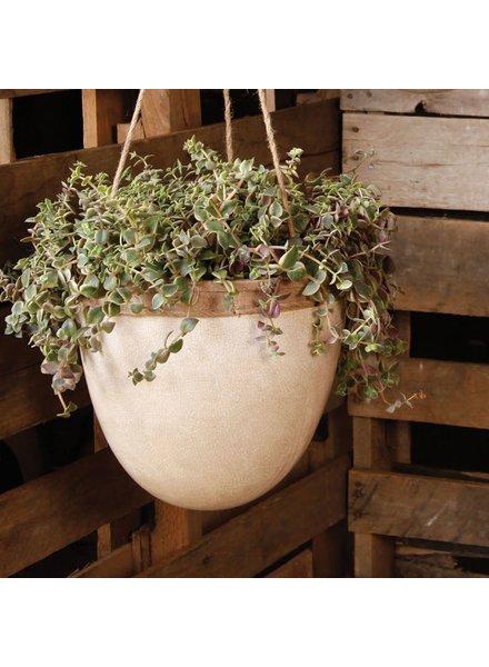 HomArt Mulberry Hanging Planter - Lrg - White