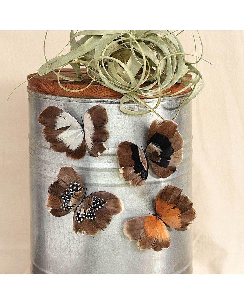 HomArt Natural Butterflies on Magnet - Box of 8 Assorted - Natural