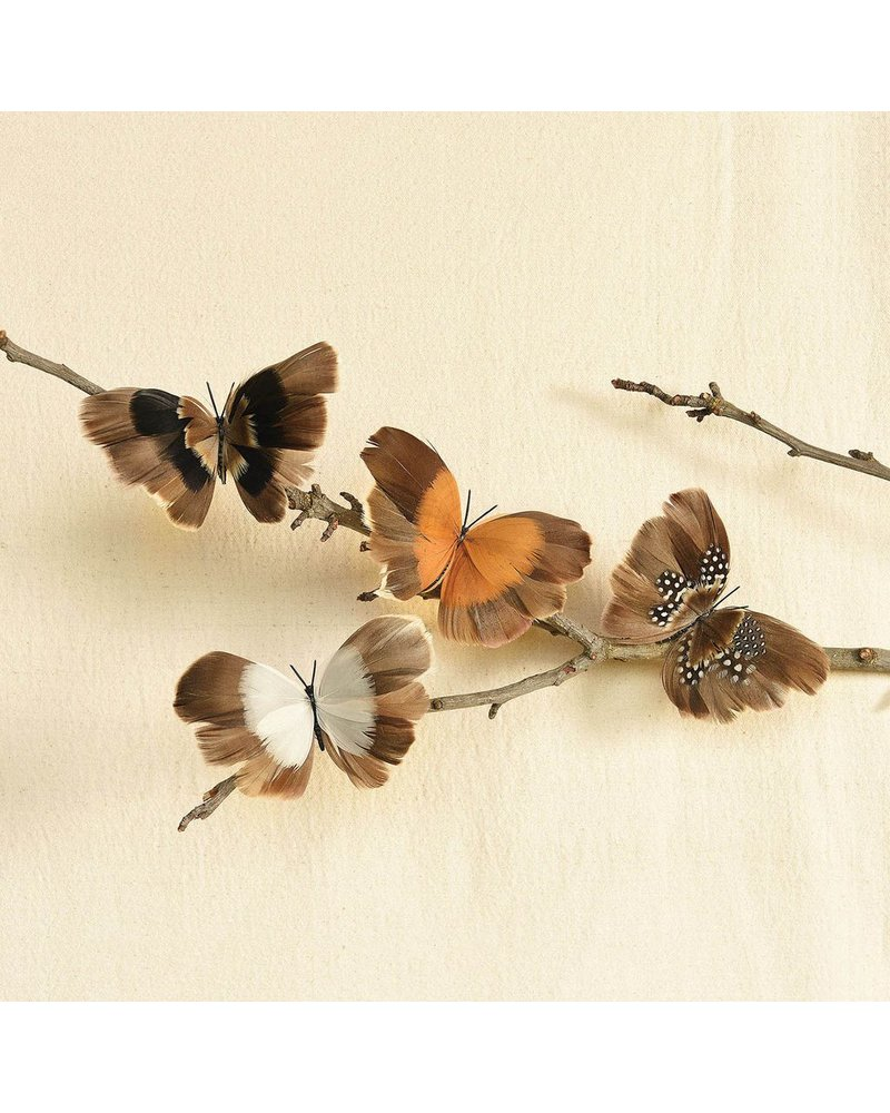 HomArt Natural Butterflies on Clip - Box of 8 Assorted - Natural