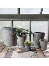 HomArt Rustic Terra Cotta Rose Pot - Sm - Moss Grey - Set of 2