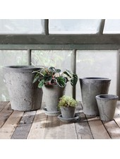 HomArt Rustic Terra Cotta Rose Pot - Med - Moss Grey