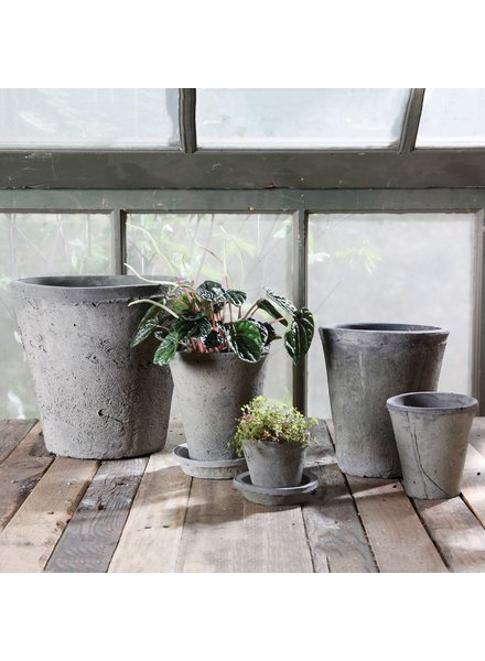 HomArt Rustic Terra Cotta Rose Pot - Lrg - Moss Grey