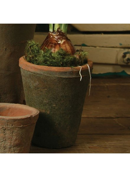 HomArt Rustic Terra Cotta Rose Pot - Med - Antique Red
