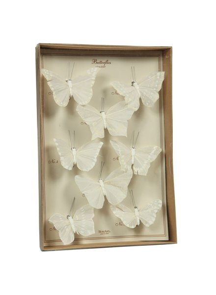 HomArt Butterfly Specimen Box - White