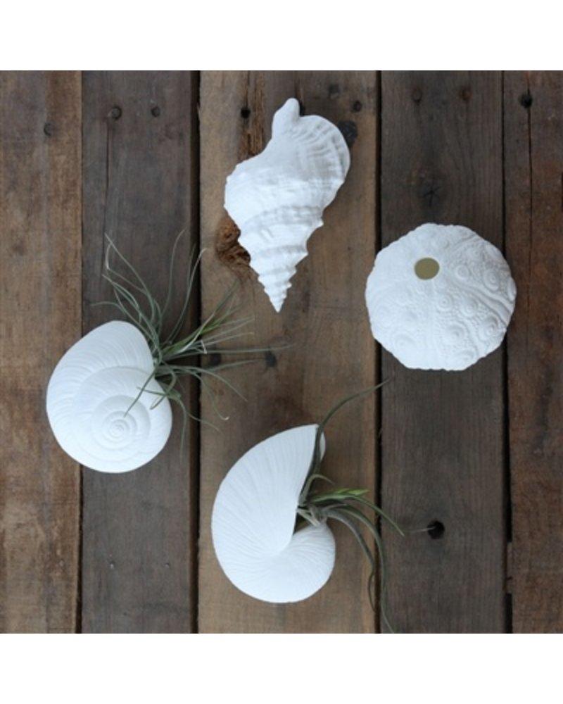 HomArt Murex Bone China Wall Vase - White